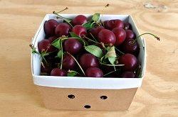 خرید میوه آلبالو