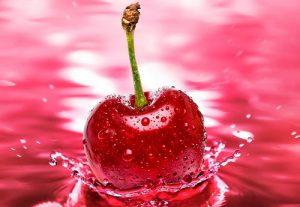 قیمت میوه آلبالو
